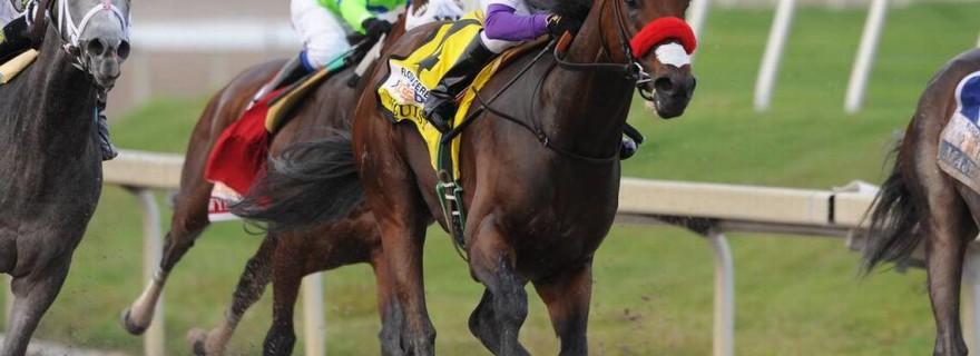 fantasy sports for horse racing